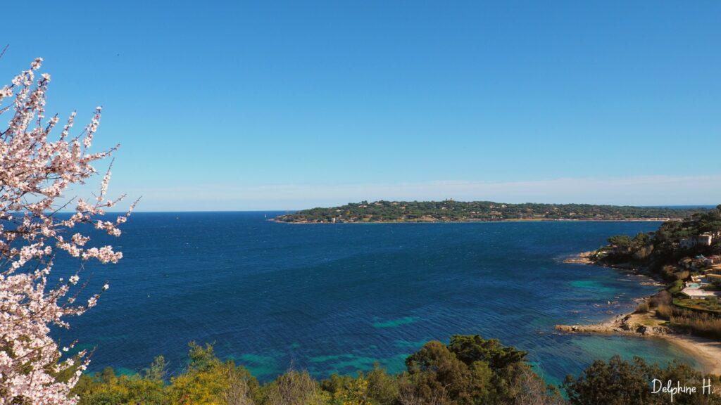 La baie du Golfe de St Tropez