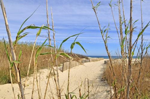 EN direction des plages de Pampelonne